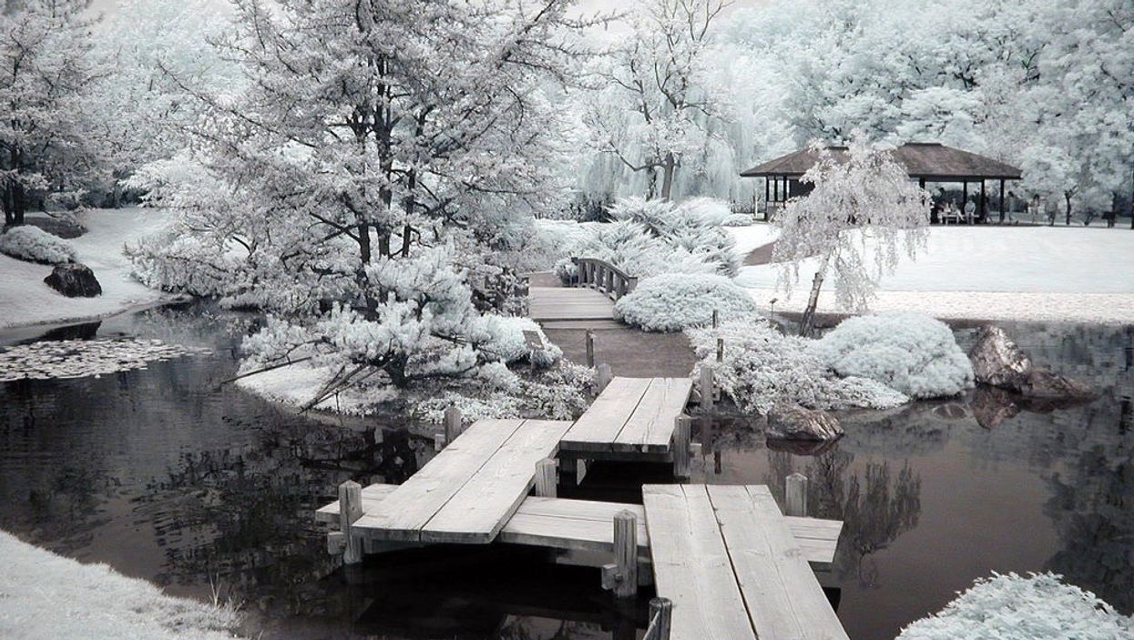 Montreal's Botanical Garden Reopened Its Serene Winter Paths For The Holiday Season
