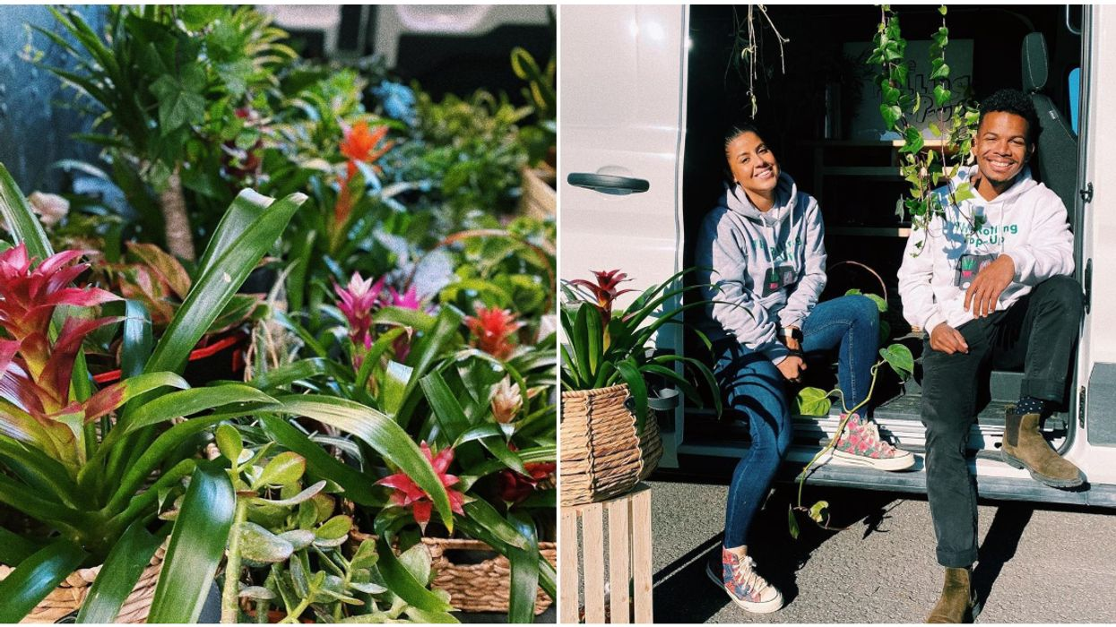Montreal's New 'Rolling' Plant Shop Comes Right To You & Brings A Flora-Party On Wheels