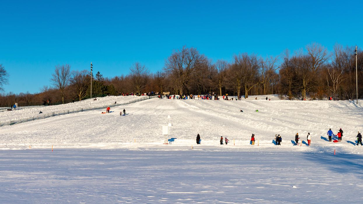 Starting Today, You Can Go Sledding For FREE At These Montreal Parks