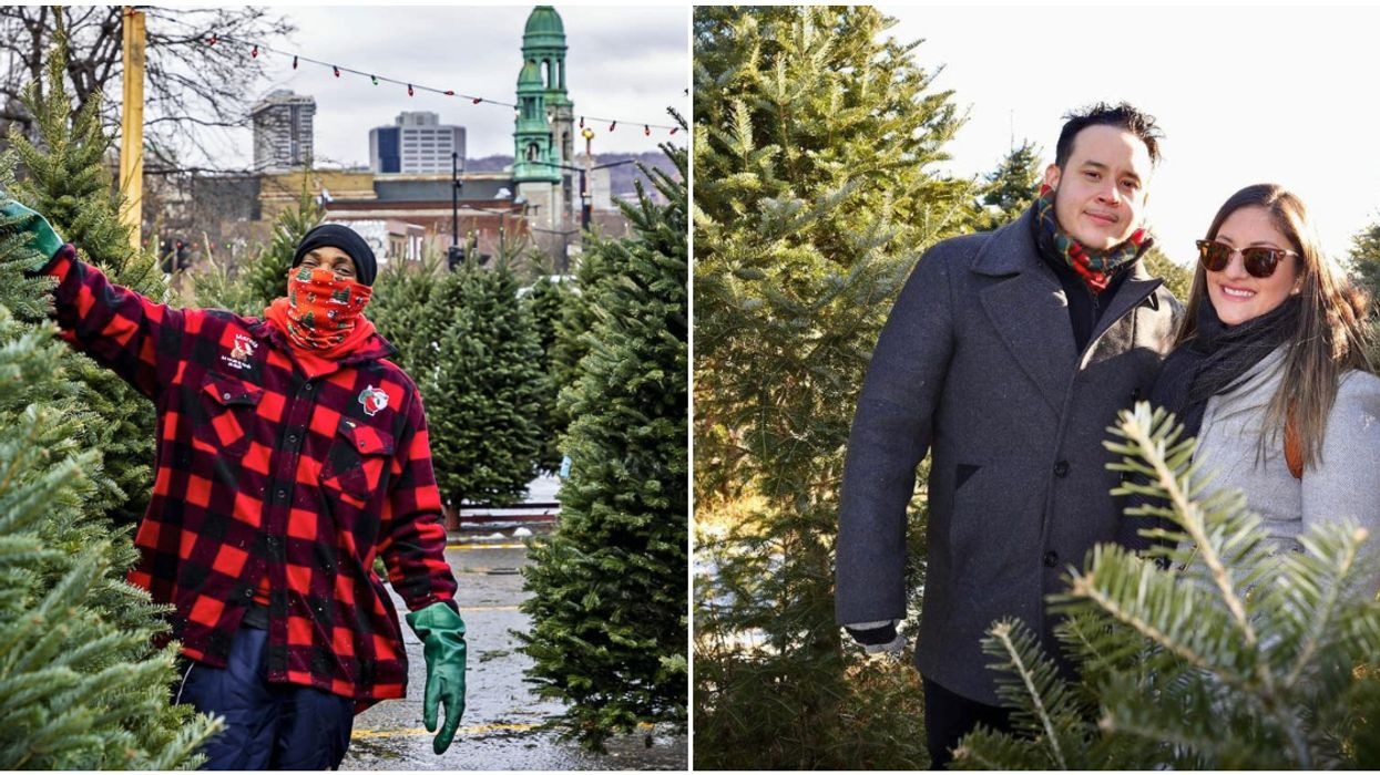 6 Spots Where Montrealers Can Buy A Christmas Tree To Really Get Into The Holiday Spirit