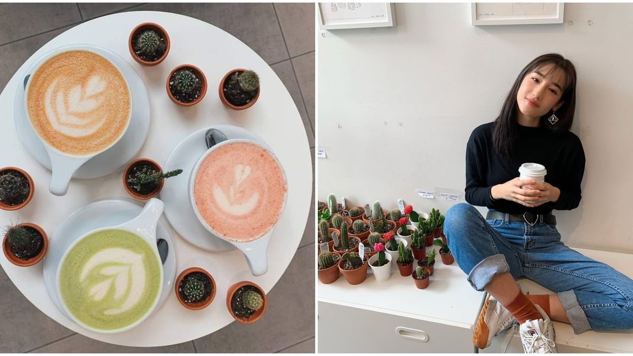 You Can Learn The Secret To Making Plant Babies While Sipping Lattes At This Montreal Café