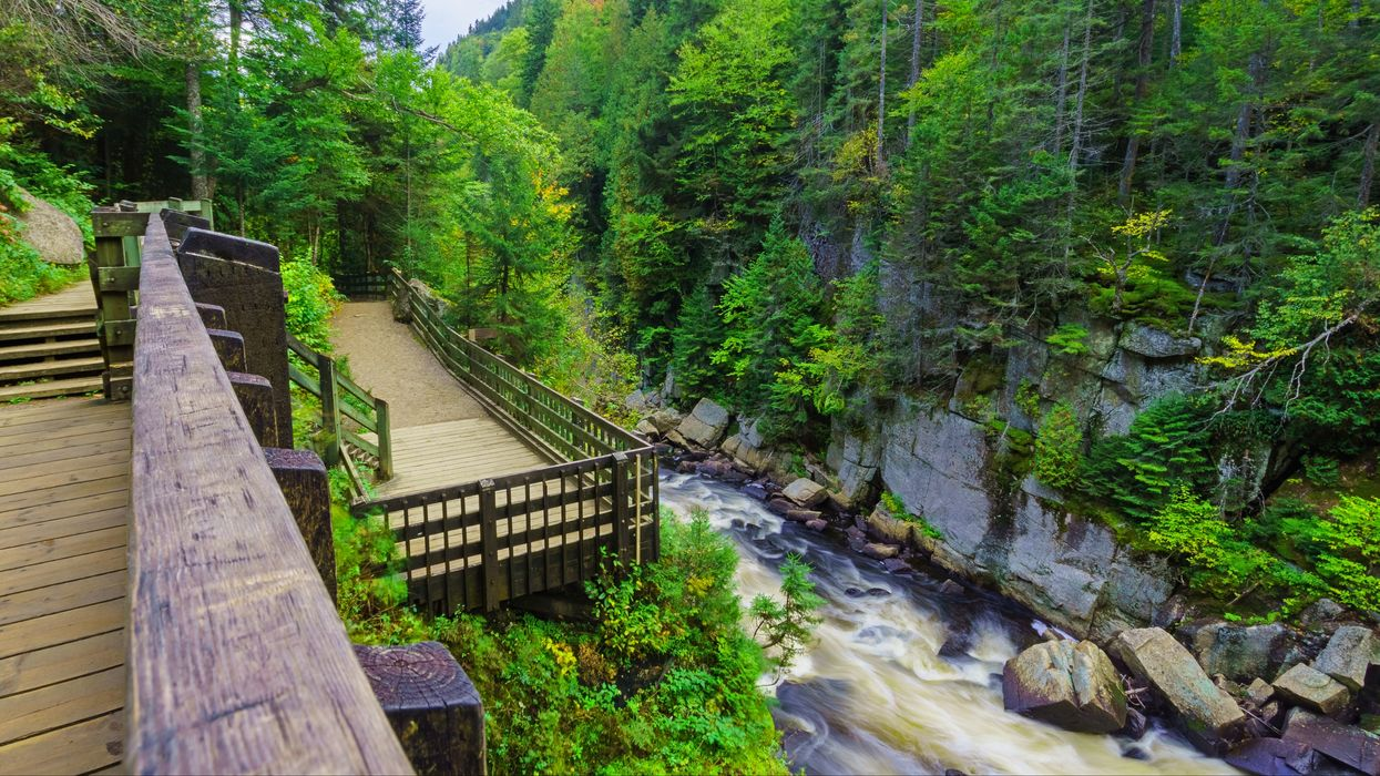 6 Summertime Hikes In Quebec That Will Give You All The Views