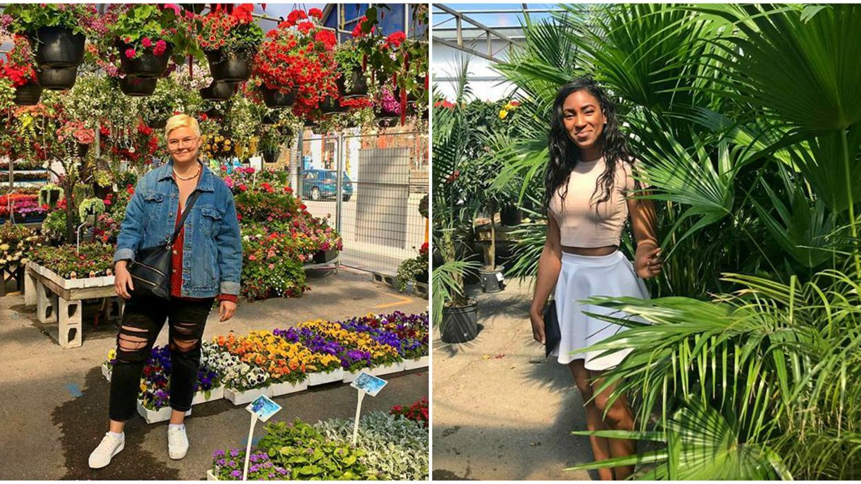 The Atwater Market Flower Stalls Are Finally Back & They're Bursting With Colour (PHOTOS)