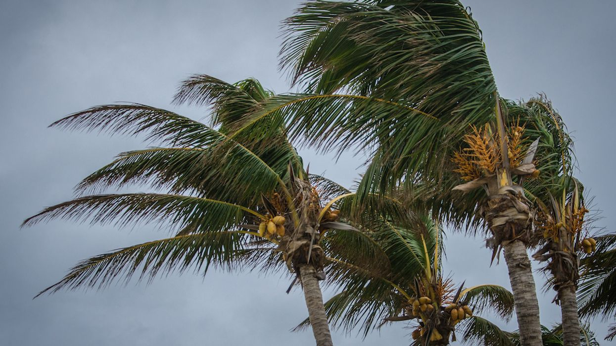 The Government Of Canada Has Issued Urgent New Hurricane Season Travel Advisories