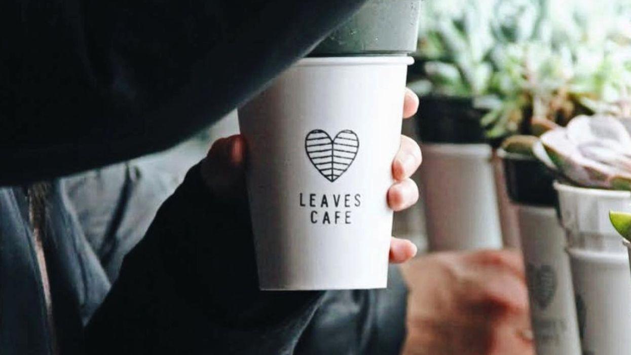 Downtown Montreal Just Got An All New Vegan Café & Study Spot