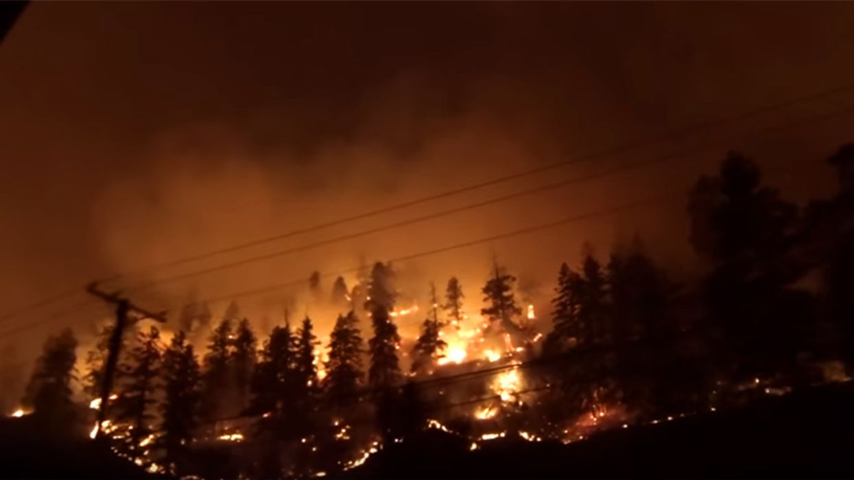 Deadly Wildfires Are Raging In Canada's West Coast Right Now (Video)