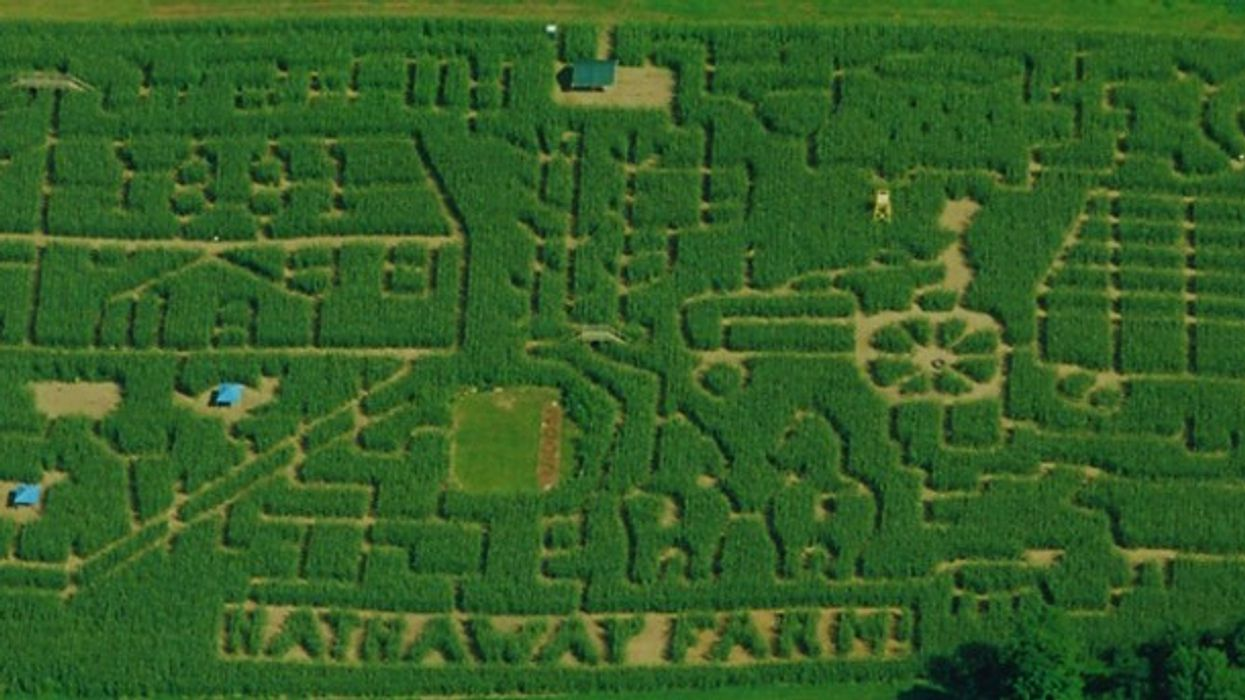 """The Insane """"Corn Maze"""" Near Montreal That You Need To Conquer This Fall"""