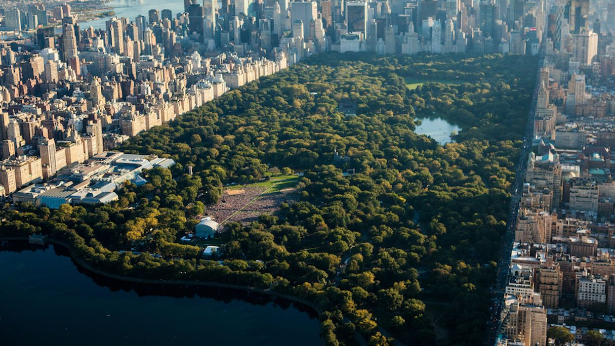 """Montreal To Get Its Very Own """"New York-Style"""" Central Park"""