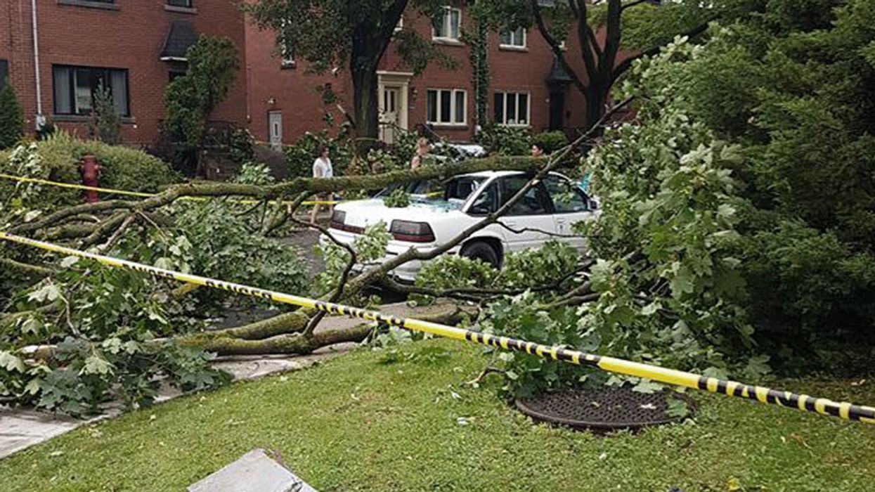 Video Showing Insane Destruction In Montreal Caused By Yesterday's Storm