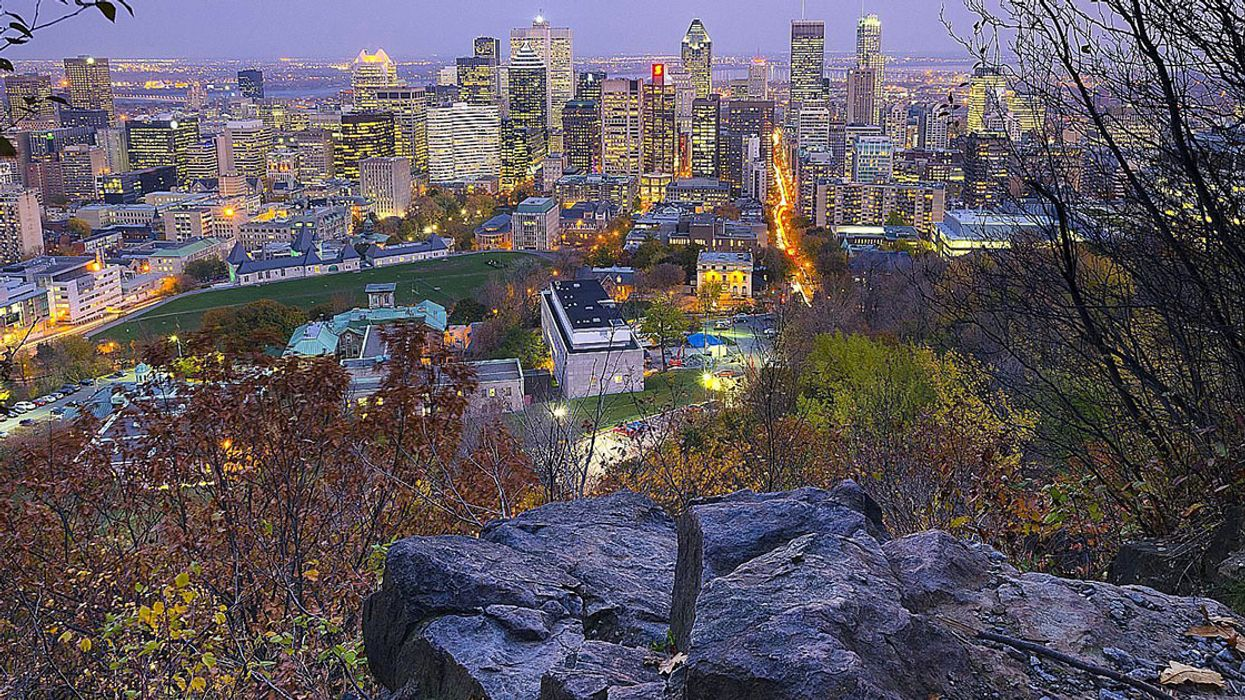 Everyone Is Talking About The Man Who Died Hiking On Mount-Royal, Here's What Actually Happened