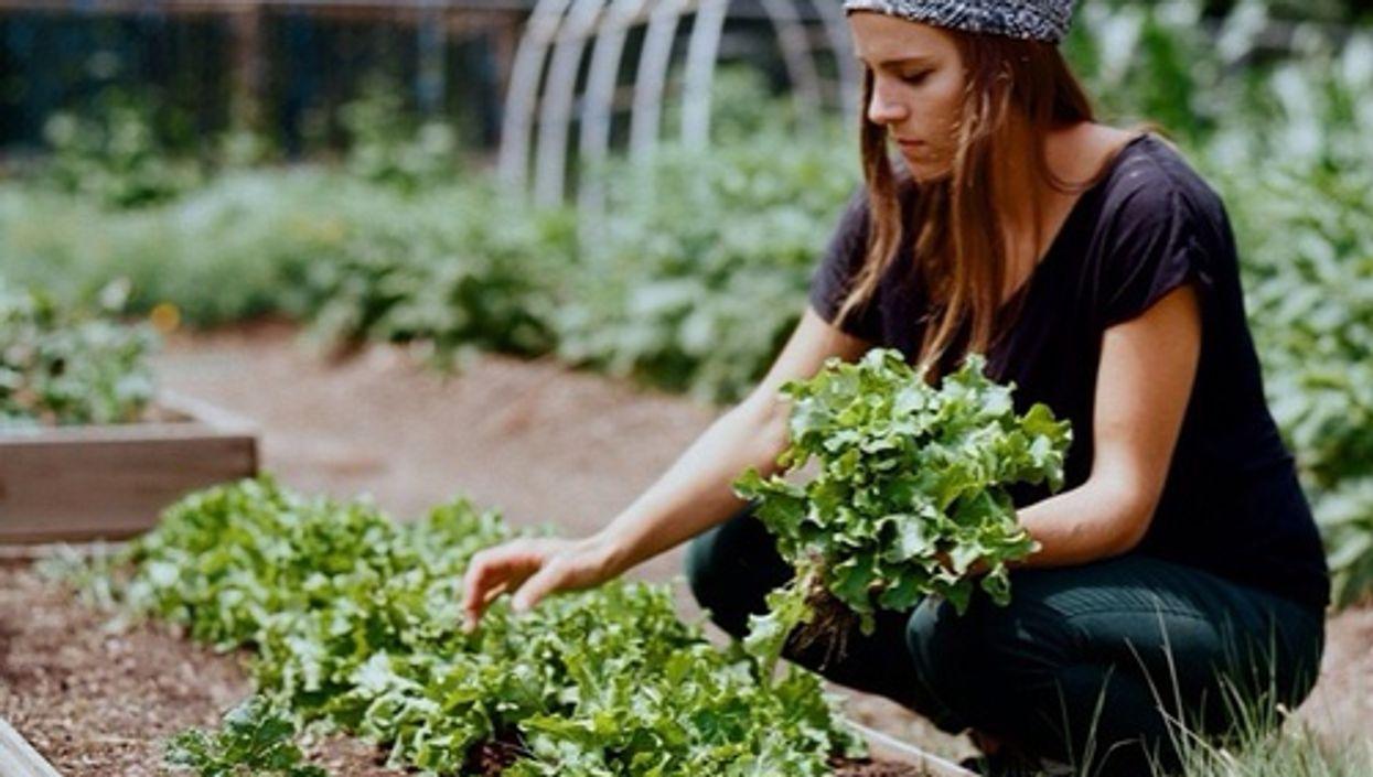 8 Easy Ways To Save Money & Go Green On Concordia Campus