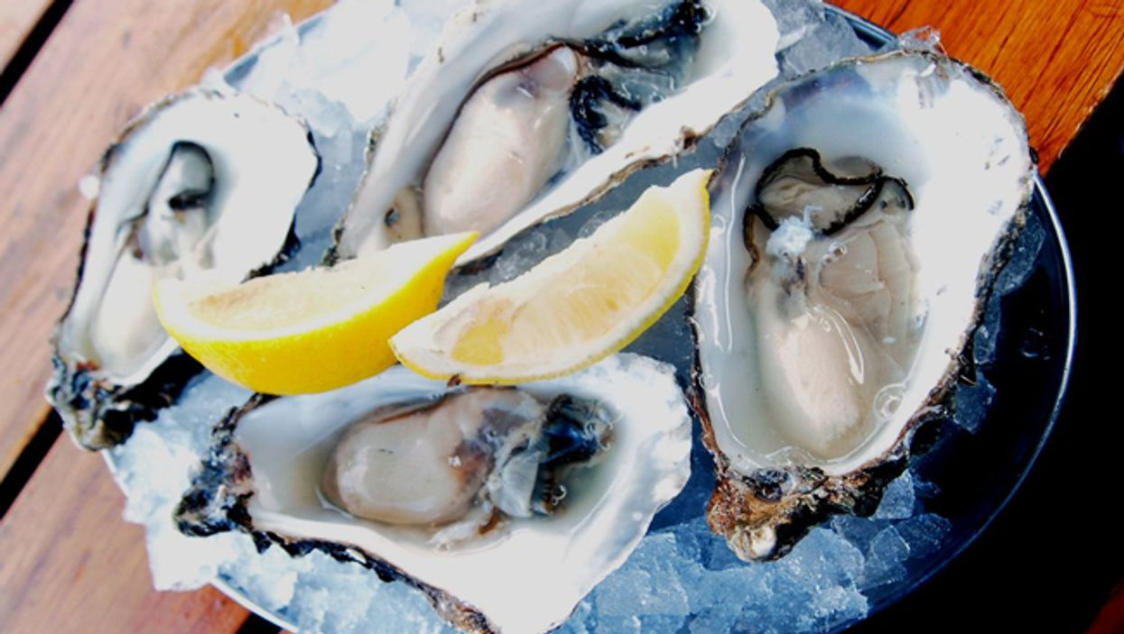 Best Montreal Oysters