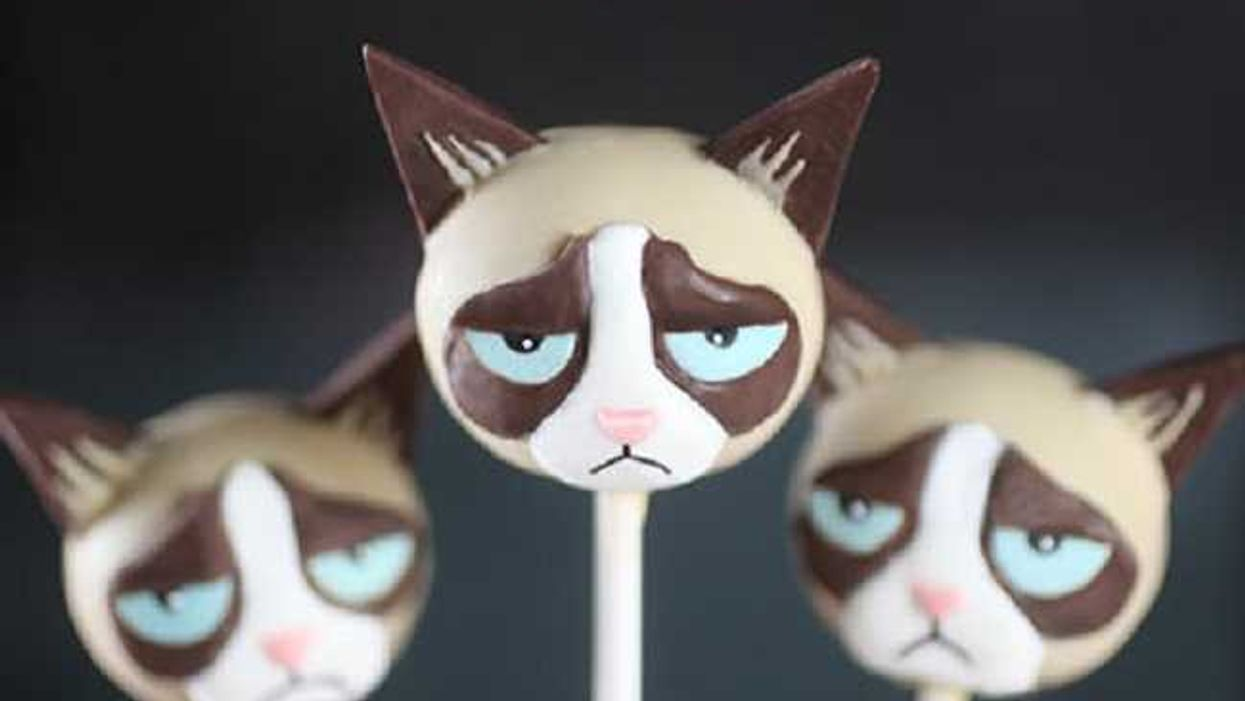 """""""Grumpy Cat"""" Cake Pops, Here Is How To Make Them"""