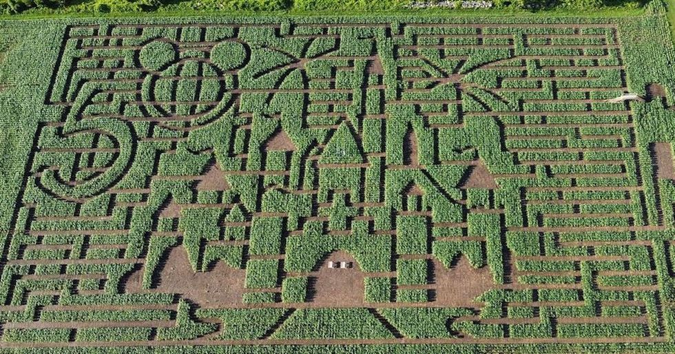 This Giant Maze Only 90 Minutes From Montreal Is For True Disney Fans