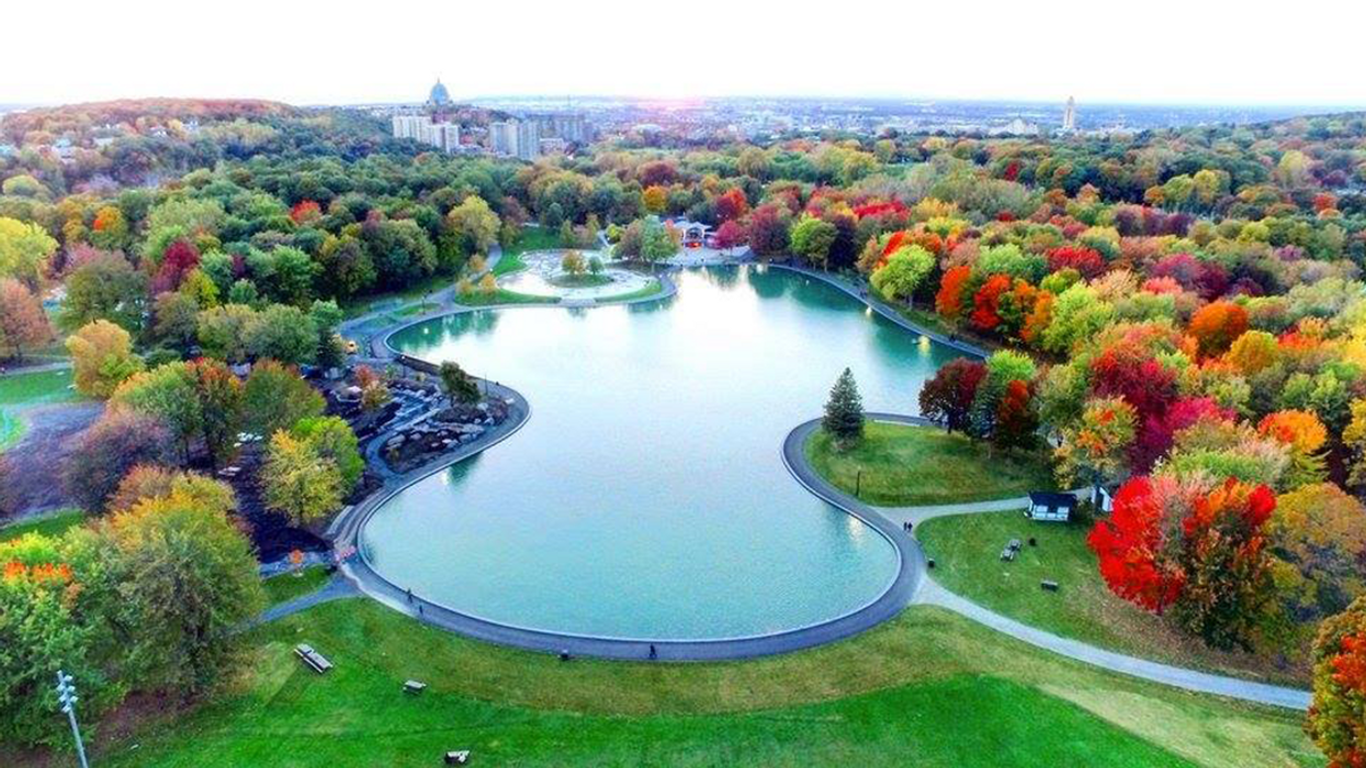 Montreal To Get Swimming Pool On Mont-Royal