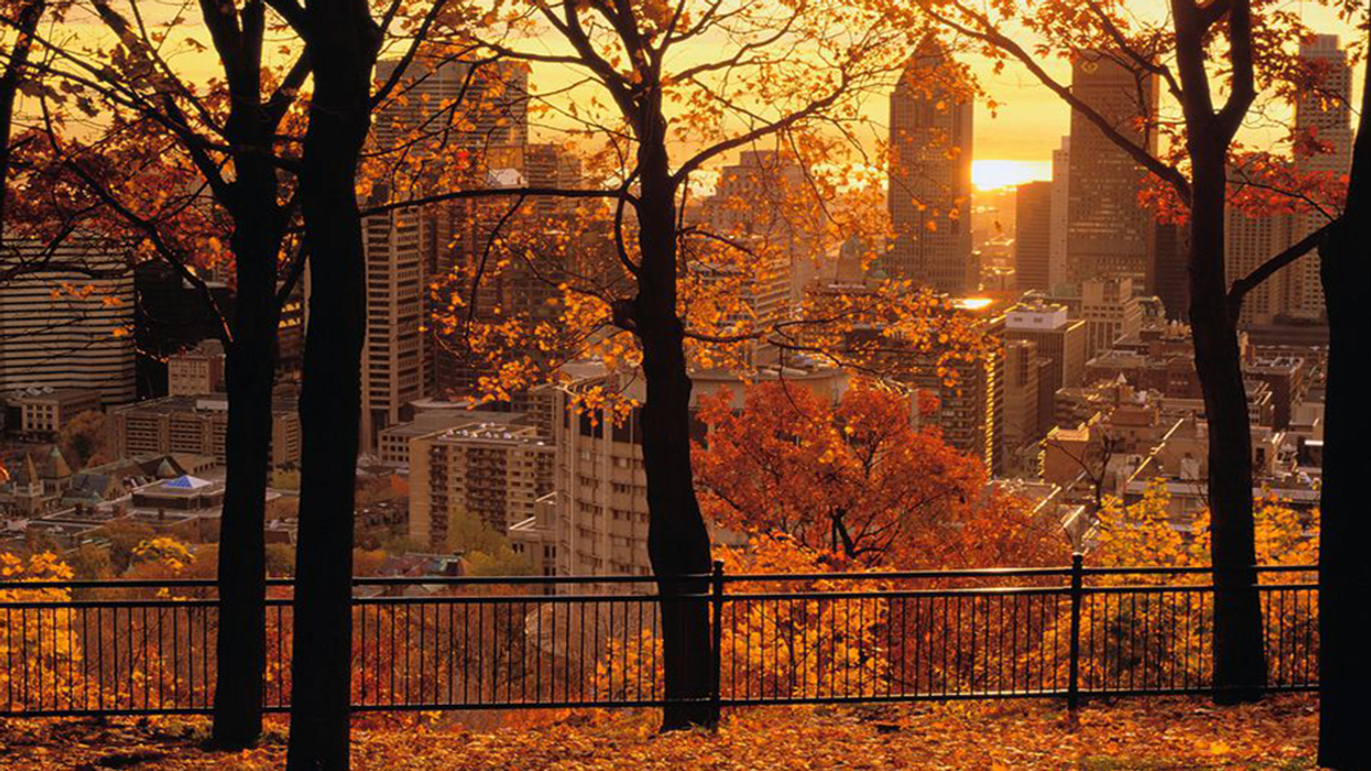 Montreal Will Break Fall Heat Records On Thanksgiving Weekend