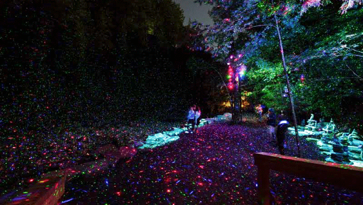 """Montreal's 7 KM Mount Royal Trail Could Be TransformedInto An """"Enchanted Forest"""" In 2017"""