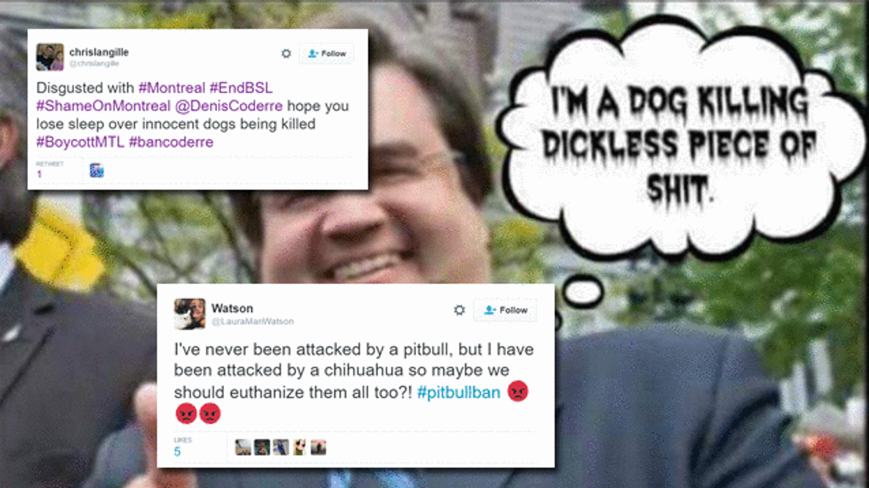 The Most Brutal Tweets About Denis Coderre Banning Pit Bulls In Montreal You Gotta See To Believe