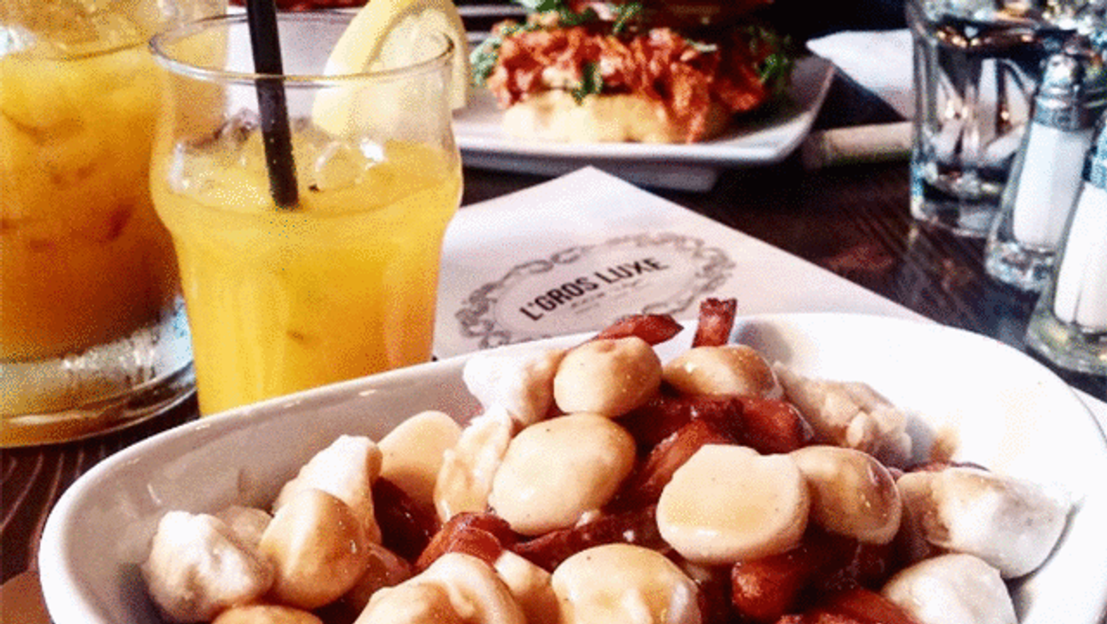 The 15 Montreal Vegan Instagram Accounts You Need To Follow ASAP If You Haven't Already
