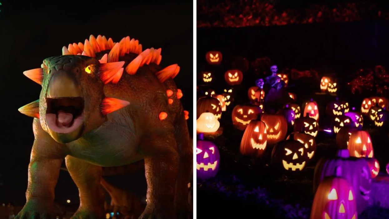 Laval's Massive Illumi Light Festival Has New Halloween Worlds With 50 Dinos & A Candyland