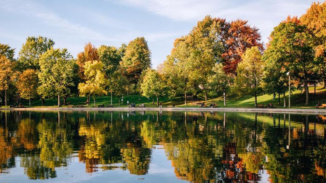 Montreal's Weather Forecast Is Predicting Summer Temperatures This Week
