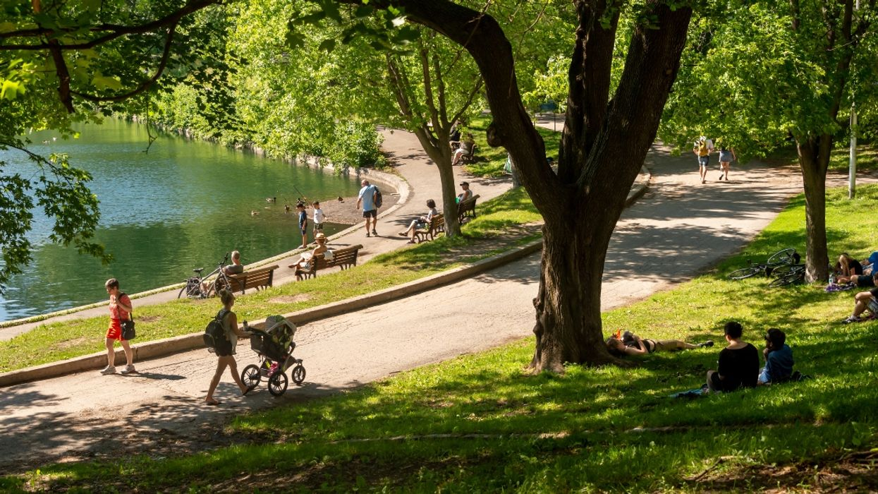 Montreal's Weekend Weather Forecast Shows Temps Near 30 C
