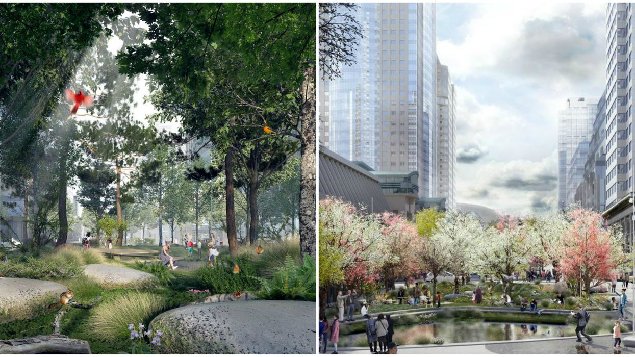 Montreal Unveiled Plans To Transform Ave. McGill College Into A Huge Downtown Forest