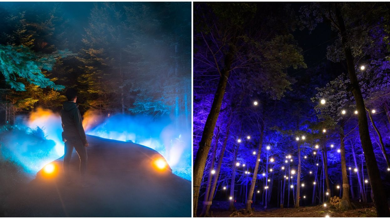 Parc Omega's Magical Night Walks Through An Enchanted Forest Are Back This Summer