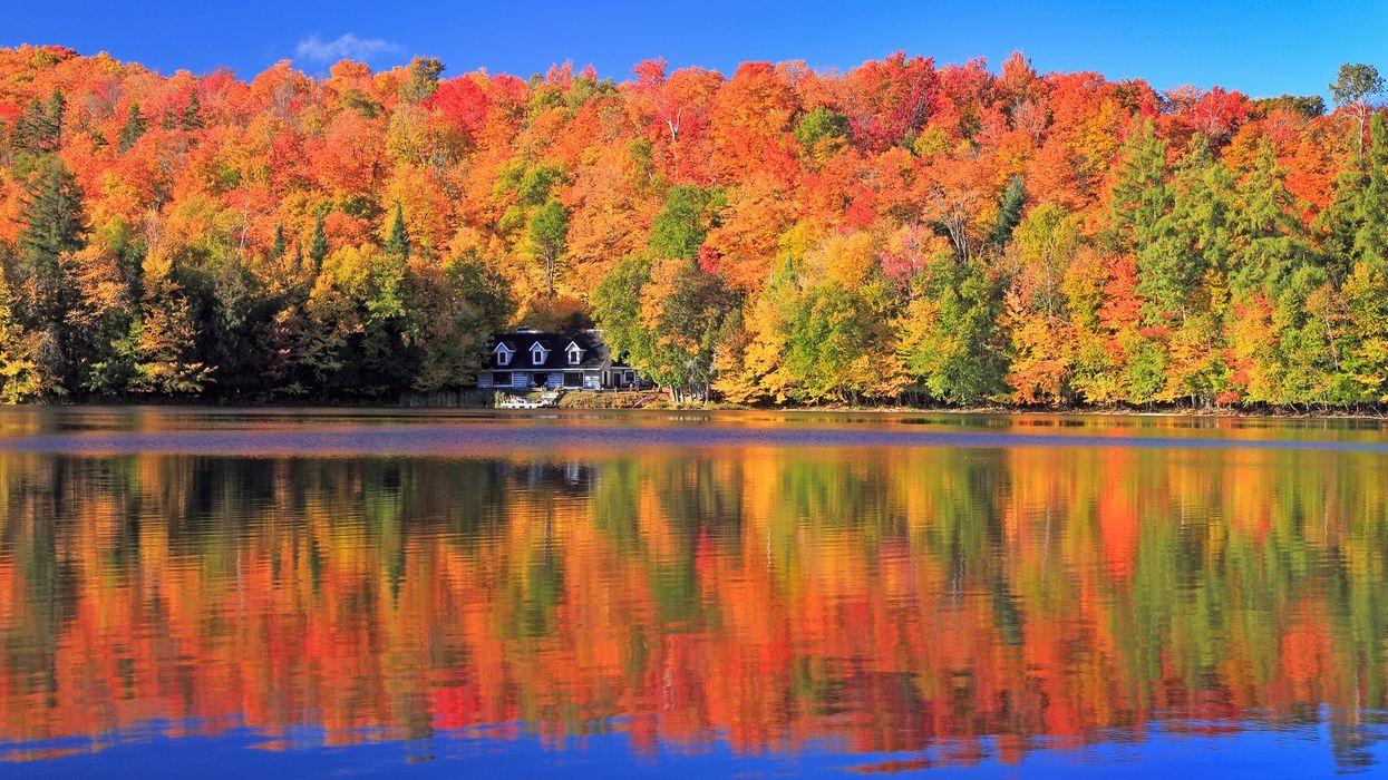 Peak Fall Foliage In Quebec 2019