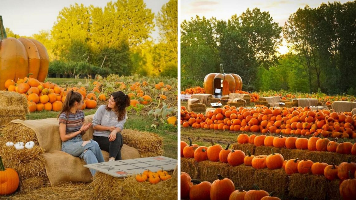 This Pumpkin Patch Near Montreal With 50,000 Pumpkins Has To Be On Your Fall Bucket List
